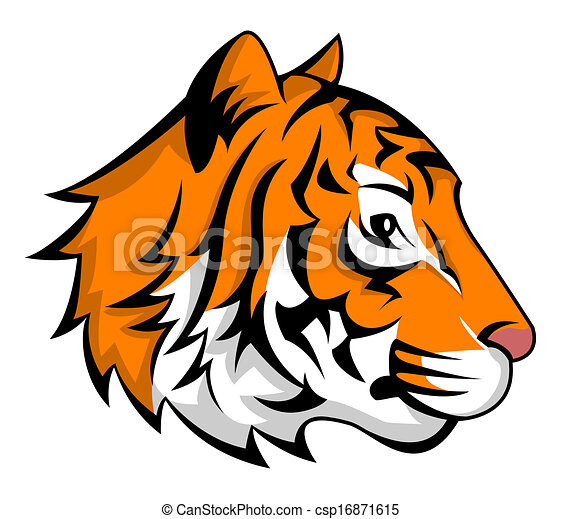 tiger - csp16871615