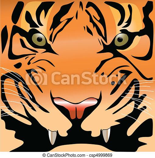 tigre, cara - csp4999869
