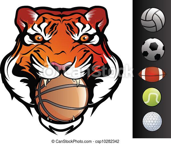 Cara de tigre - csp10282342