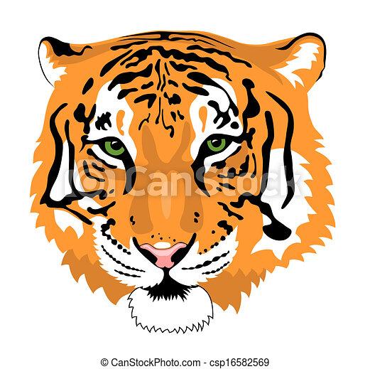 Tigre - csp16582569