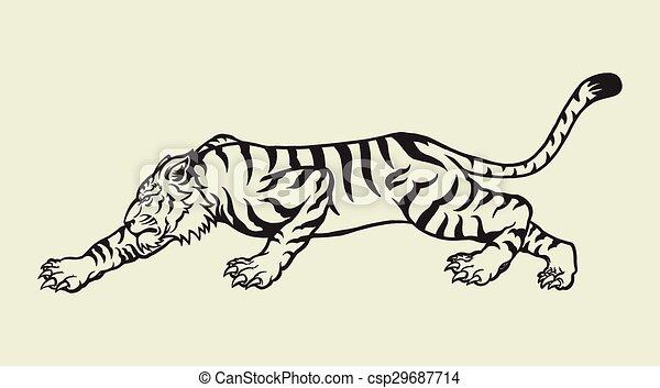 Tigre - csp29687714