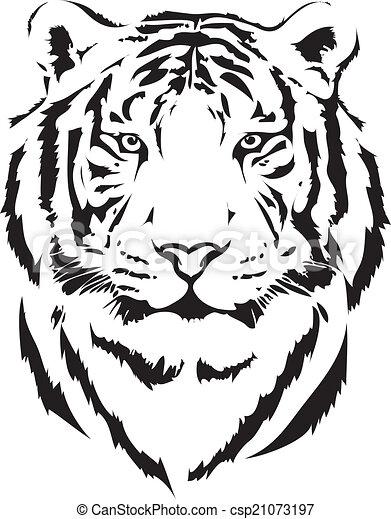 tigre, noir, tête, interprétation - csp21073197
