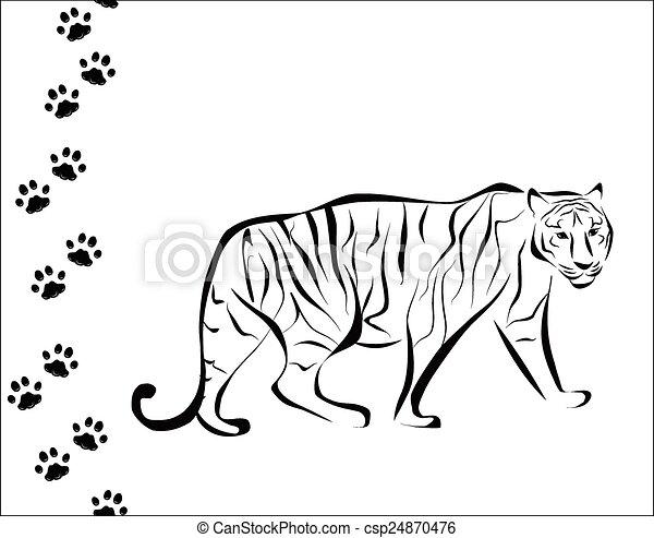 Tigre y pasos - csp24870476
