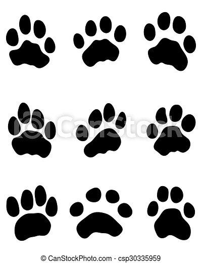 Pata de tigre - csp30335959