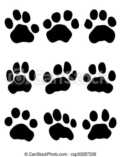 Pata de tigre - csp30287336