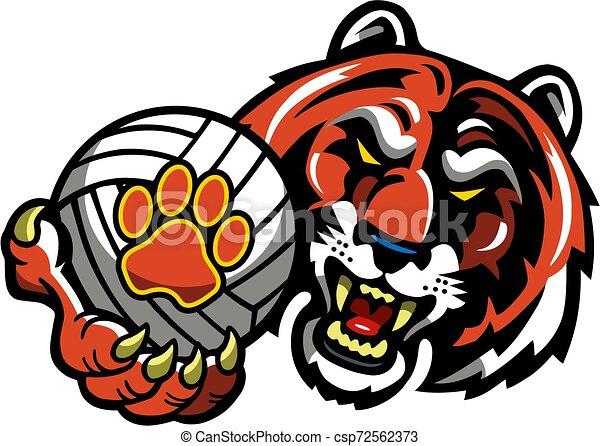 Voleibol tigre - csp72562373