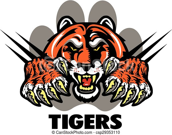 Tigres - csp29353110