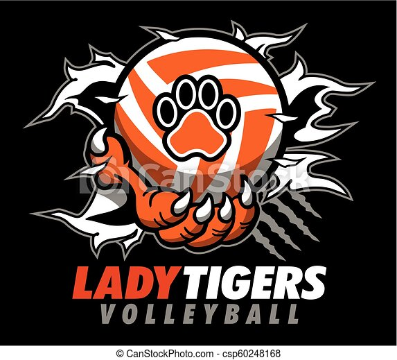 Dama tigres voleibol - csp60248168