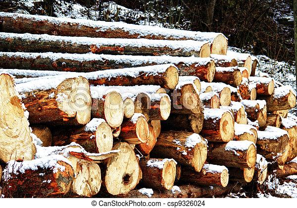 Timber - csp9326024