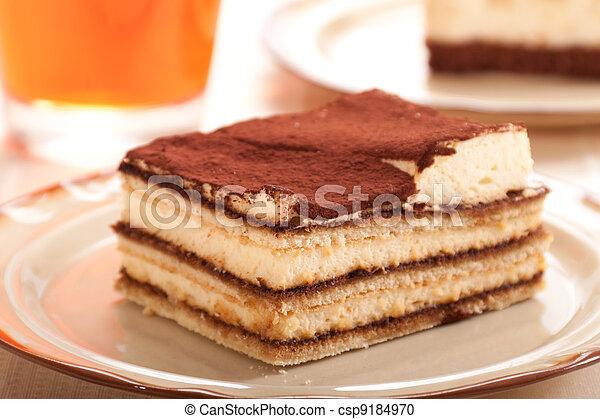 tiramisu dessert - csp9184970