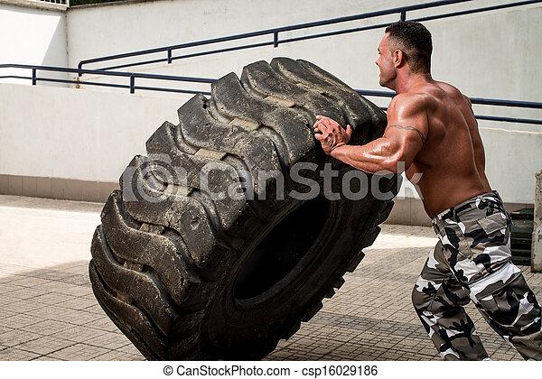 Tire Workout - csp16029186