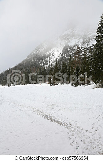 tirol, itália, inverno, pragser, neve, wildsee, sul - csp57566354