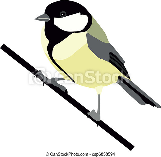 great tit tit bird wildlife awe formal garden europe eps rh canstockphoto com black capped chickadee clipart black capped chickadee clipart