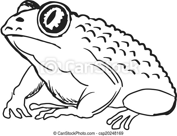 hand drawn sketch cartoon illustration of toad rh canstockphoto com toad clipart free toad clipart free