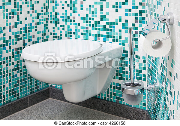 Toilet Seat And Paper - csp14266158
