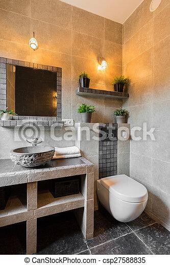 toilette, modern, luxus, wohnsitz