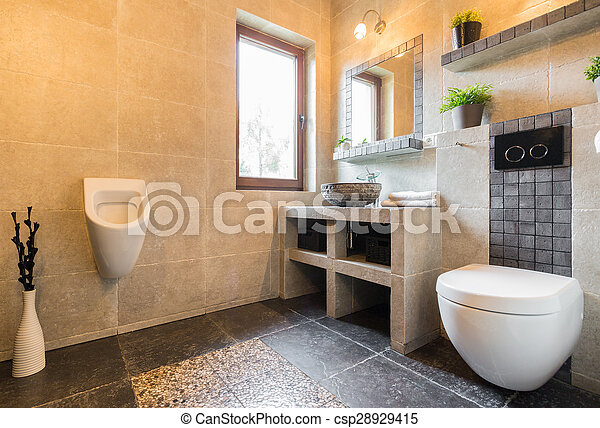 Toilette moderne urinoir toilette horizontal moderne for Toilette moderne photos