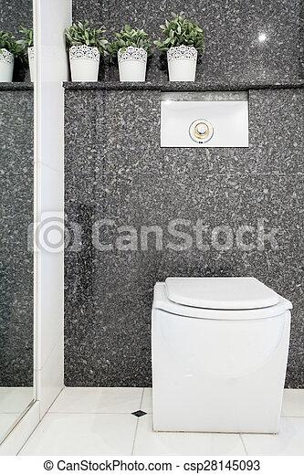 Toilette, toilettes, moderne, vertical, vue.