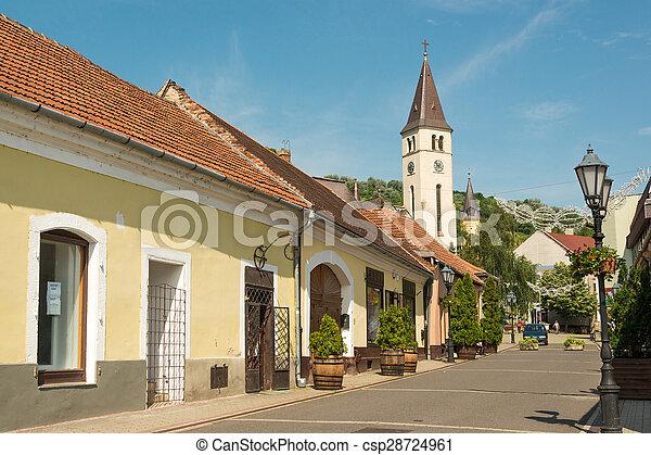 Tokaj town - csp28724961