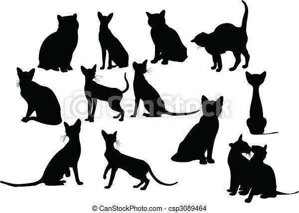 tolv, silhouettes, katter - csp3089464