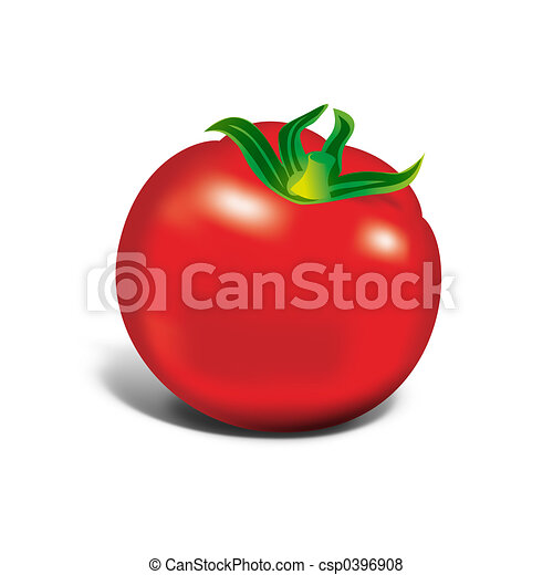 tomaat, rood - csp0396908