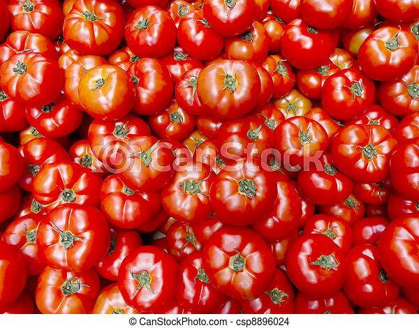 tomaat - csp8896024