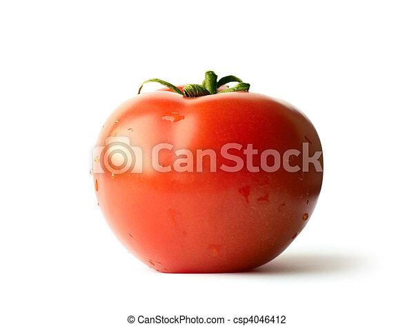 tomaat, witte , vrijstaand, achtergrond, fris - csp4046412