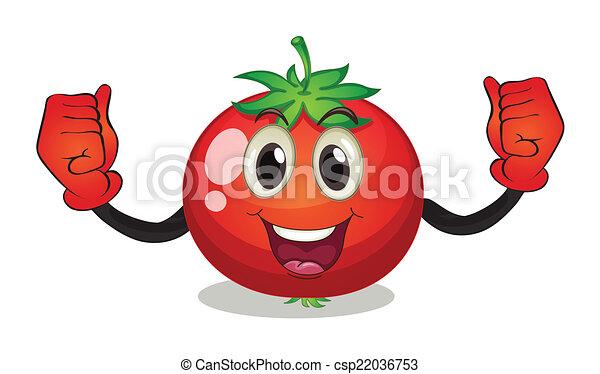 tomate - csp22036753