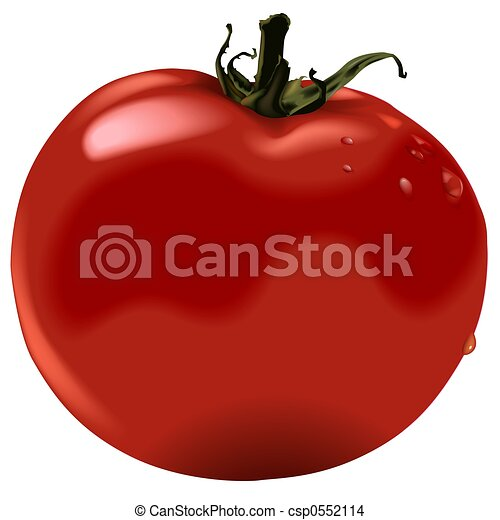 Tomate d taill illustration color lev - Tomate dessin ...