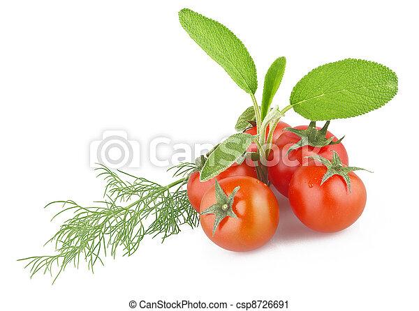 tomate, salvaje, hinojo, encima de cierre - csp8726691