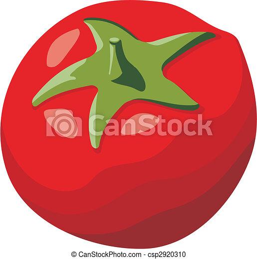 tomate, vecteur - csp2920310