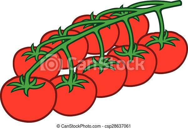 Tomates Cerises Branche