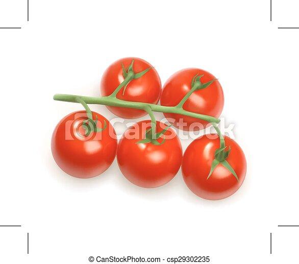 Tomates Cerises Illustration Tomates Cerise Illustration
