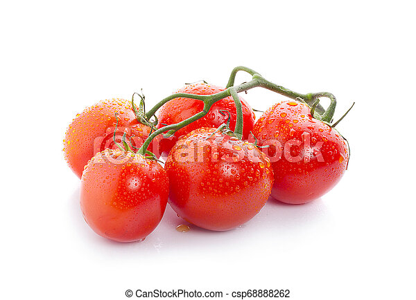 Tomato branch with water droplets isolated on white background - csp68888262