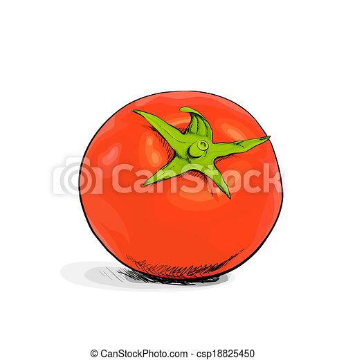 Tomato - csp18825450