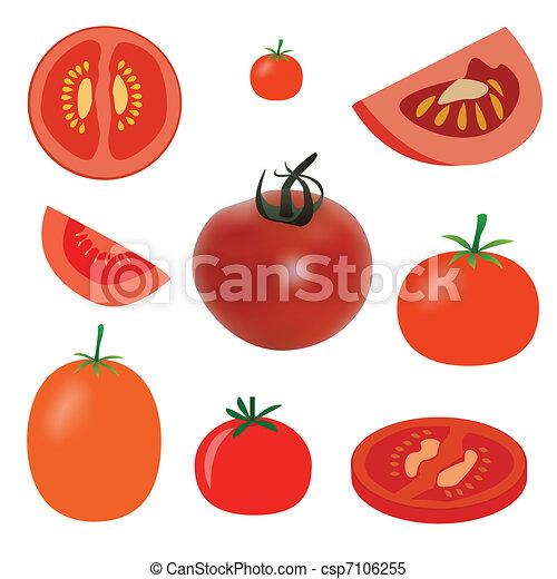tomato - csp7106255