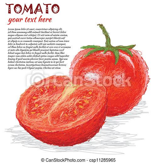 tomato fruit - csp11285965