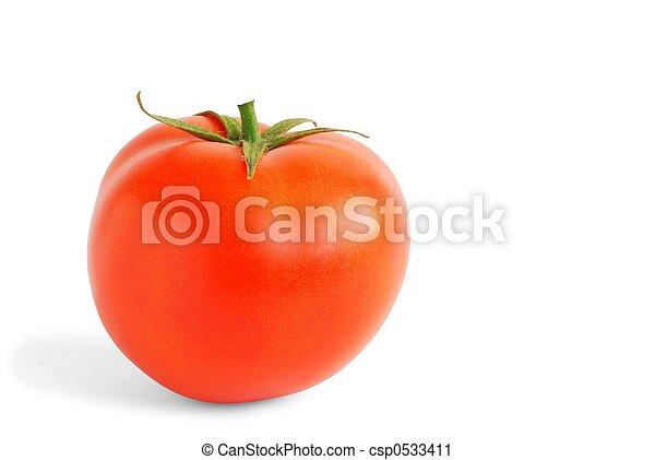 Tomato - csp0533411