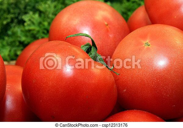 tomato - csp12313176
