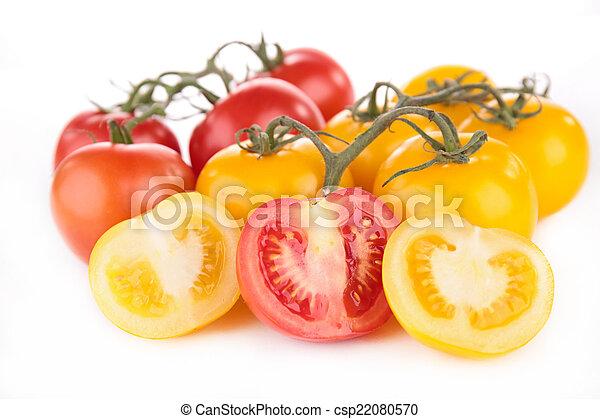 tomato - csp22080570