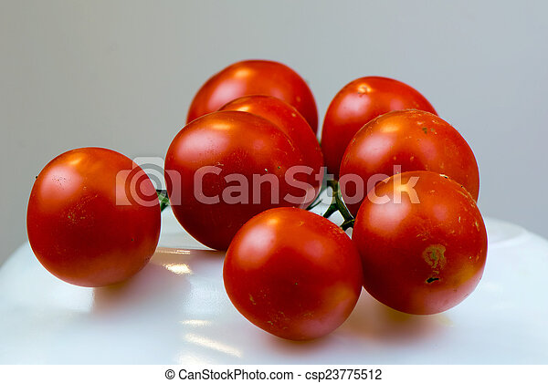 Tomato - csp23775512