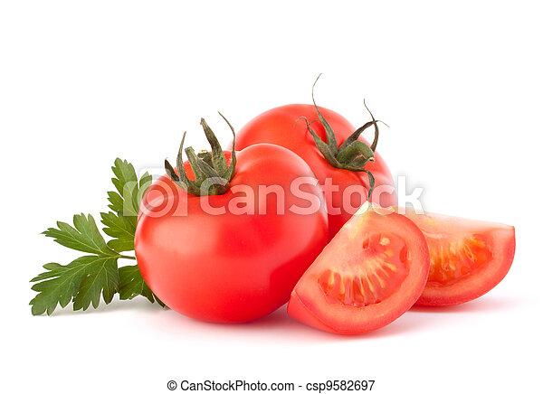 Tomato - csp9582697