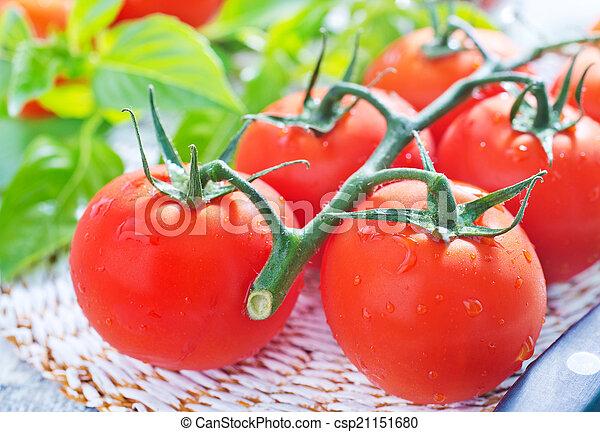 tomato - csp21151680