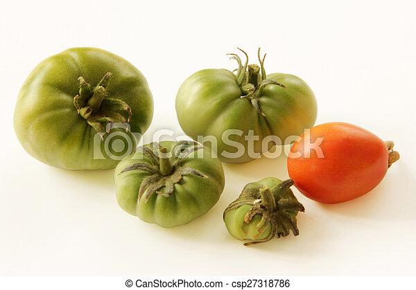 Tomato - csp27318786