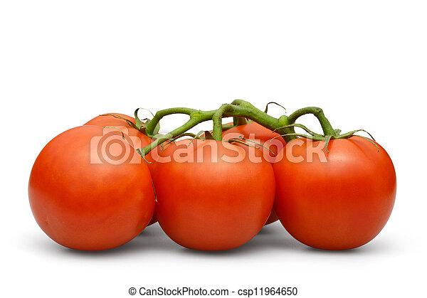 tomato - csp11964650