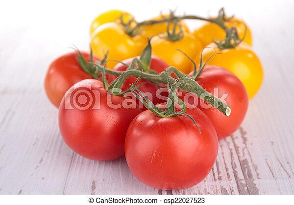 tomato - csp22027523