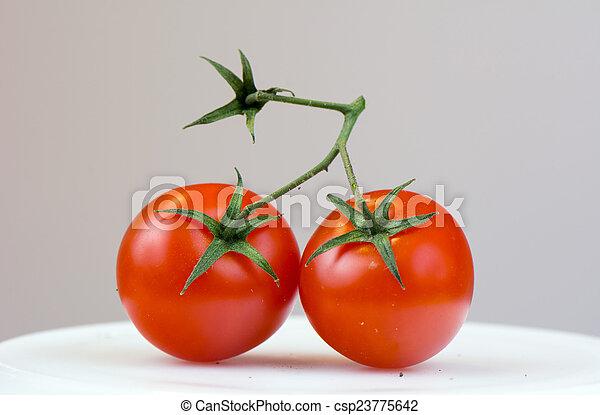 Tomato - csp23775642