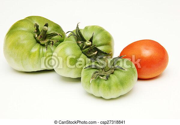 Tomato - csp27318841