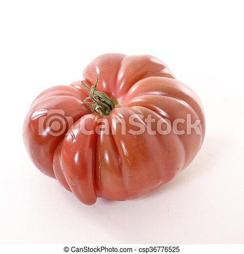 tomato - csp36776525