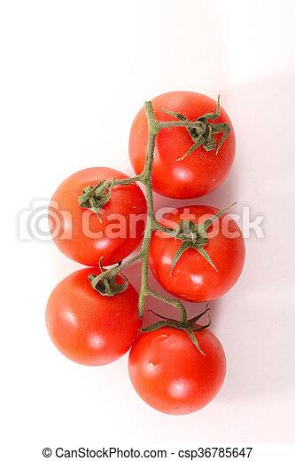 tomato - csp36785647